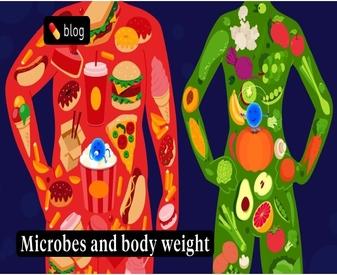 Sağlıklı Bağırsak Florası ve Kilo Kontrolü